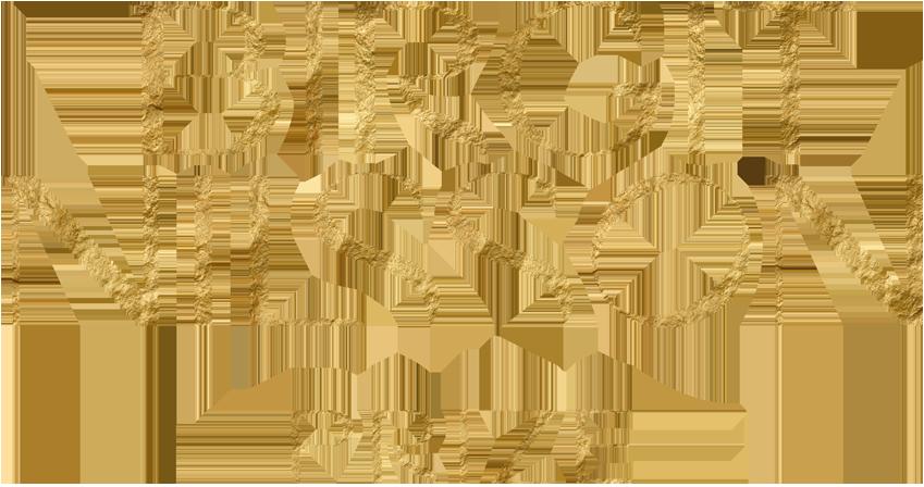 Birgit Nilsson Prize Logotype Gold